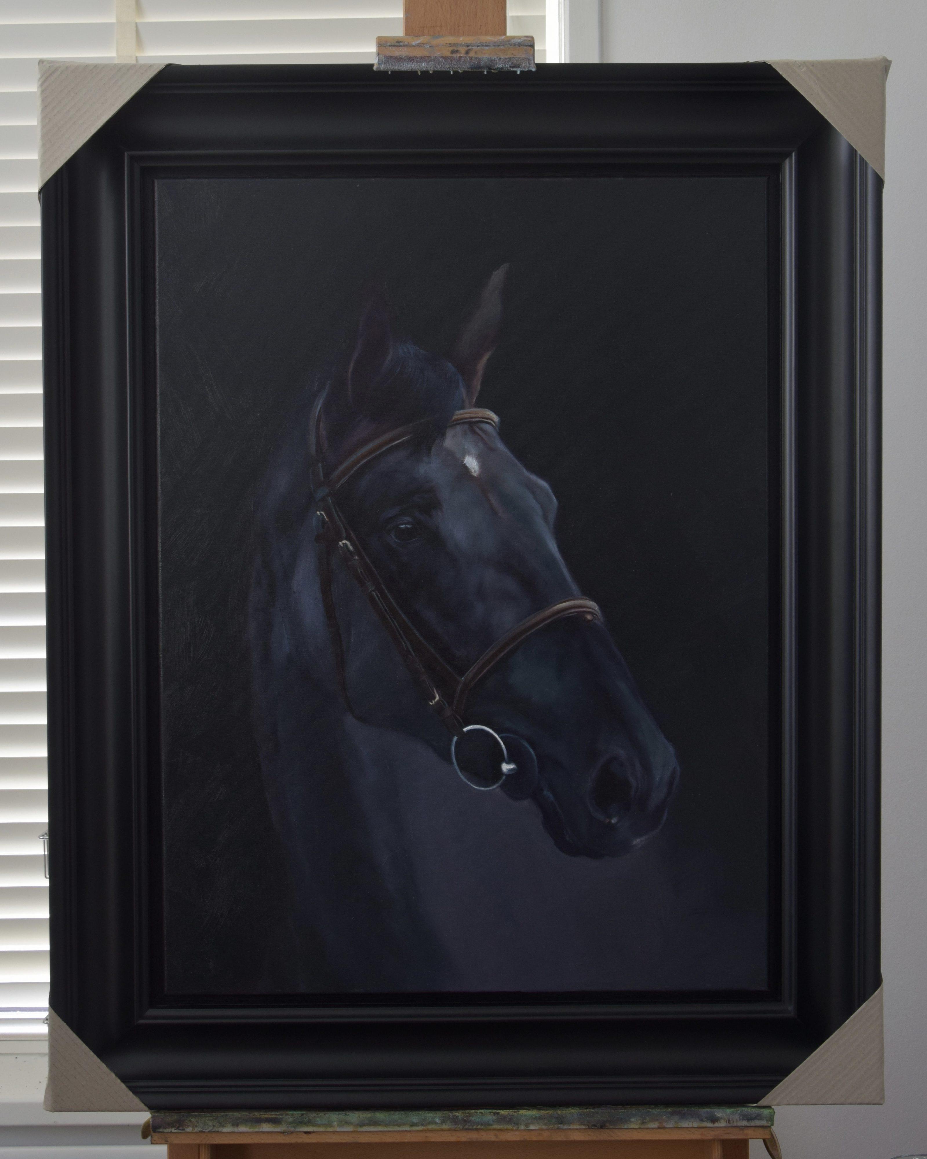zwart paard portret corry van hoorn