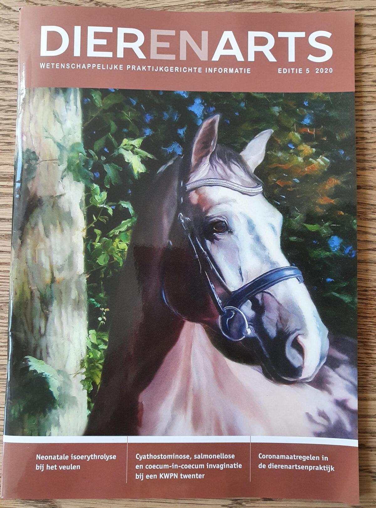 schilderij cover vakblad DIER-EN-ARTS